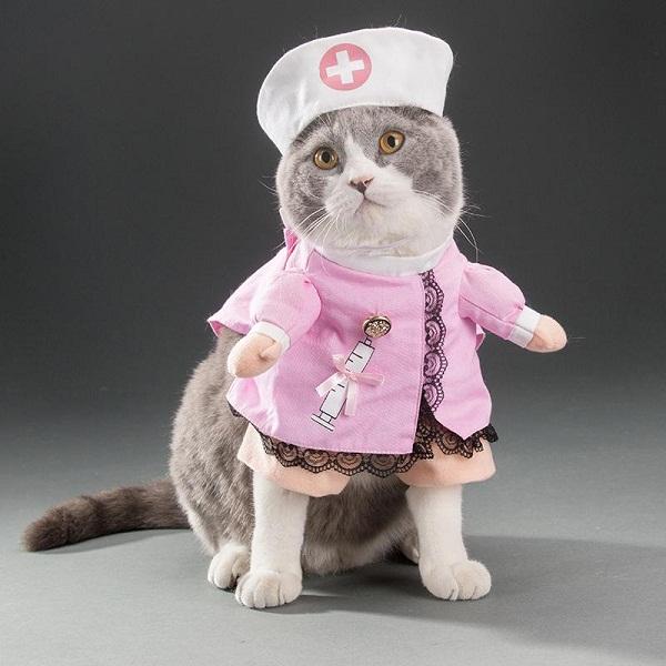 форма медсестры с шапкой