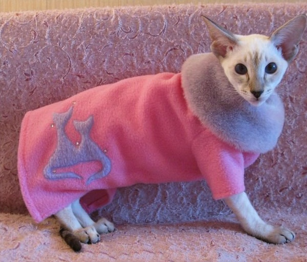 розовое пальто с воротником