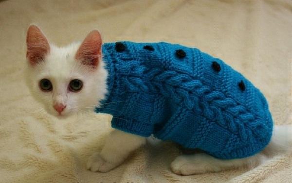 синий свитер с узорами