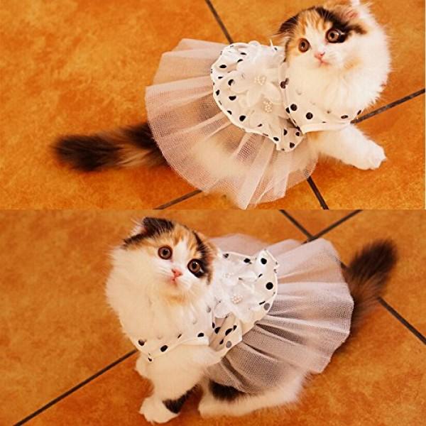 платье в горошек с рюшем