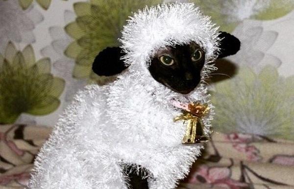 костюм овечка на новый год