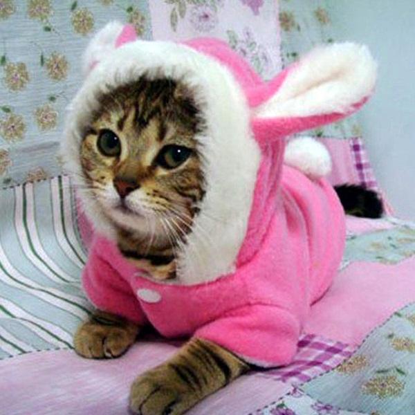 розовый халат с ушками