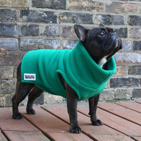 одежда для собак своими руками варианты выкроек и снятие мерок