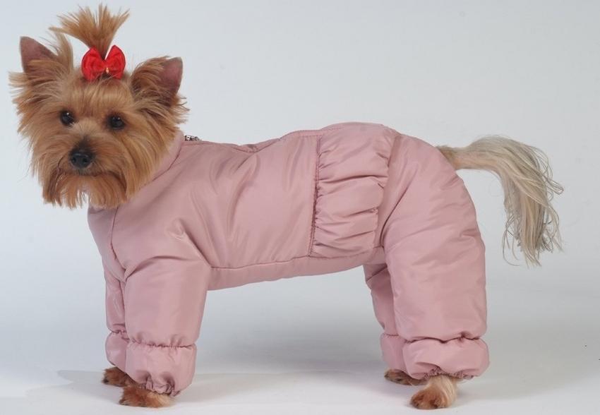 Комбинезон синтепоновый, для собак