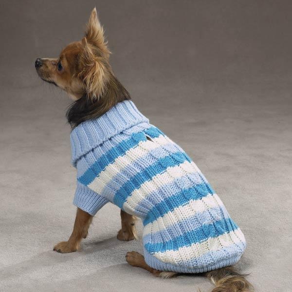 Маленькая собака в свитере