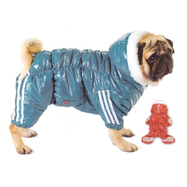 Спортивный синий костюм