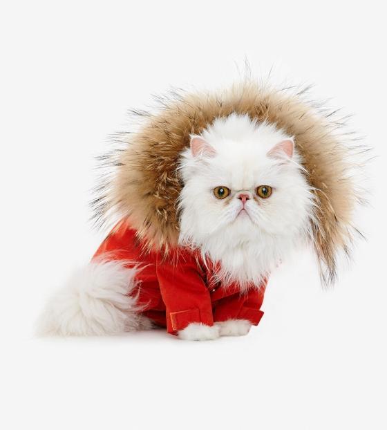 Теплая и практичная куртка